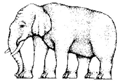 Optical illusion of an elephant with many legs